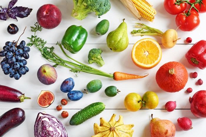 モグワンは子犬の栄養バランスにおすすめの野菜やフルーツが豊富!