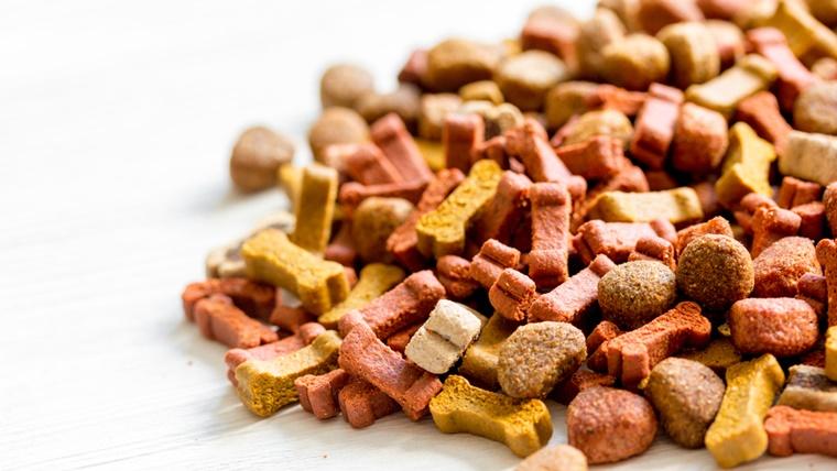 粒の大きさや種類別のおすすめドッグフード